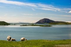 ijsland-02648