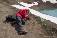 ijsland-6745